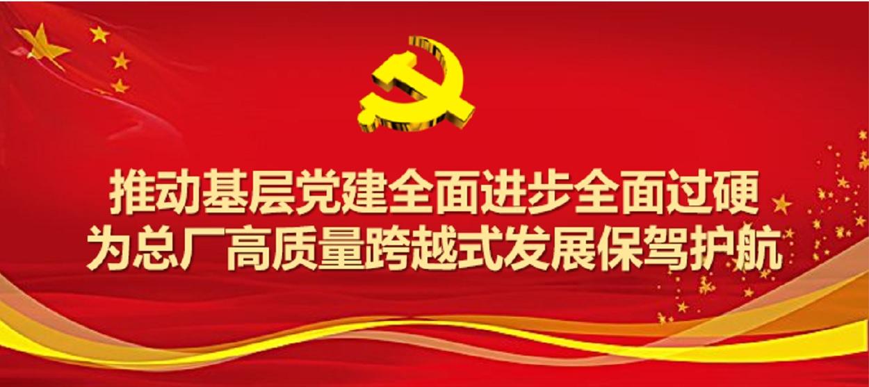 白云山制药总厂圆满完成2019年度党支部工作及党支部书记考评工作